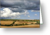 Grey Clouds Greeting Cards - Cornfield Mosaic Greeting Card by Heiko Koehrer-Wagner