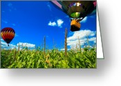 Cornfield Photo Greeting Cards - Cornfield View Hot Air Balloons Greeting Card by Bob Orsillo