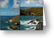 Sea Birds Greeting Cards - Cornwall North Coast Greeting Card by Brian Roscorla