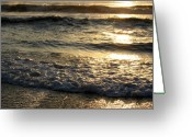 Tamara Stoneburner Greeting Cards - Corolla Waves II Greeting Card by Tamara Stoneburner