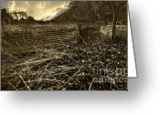 Sepia Greeting Cards - Corrugated Tin Pen Greeting Card by Meirion Matthias