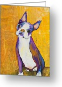 Pet Portraits Greeting Cards - Cosmo Greeting Card by Pat Saunders-White            