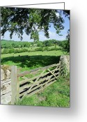 Rural Scene Greeting Cards - Cotswolds Greeting Card by Soundimageplus