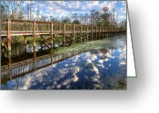 Florida Bridge Greeting Cards - Cottonballs Greeting Card by Debra and Dave Vanderlaan
