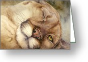 Puma Greeting Cards - Cougar    I See You     Greeting Card by Bonnie Rinier