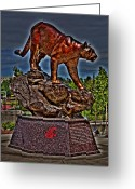 Cougar Greeting Cards - Cougar Pride Greeting Card by David Patterson