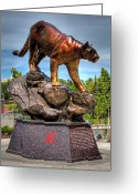 Wsu Cougs Greeting Cards - Cougar Pride II Greeting Card by David Patterson