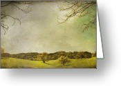 Oak Trees Greeting Cards - Count On Me Greeting Card by Laurie Search