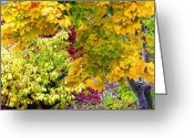Maple Leaves Greeting Cards - Country Color 15 Greeting Card by Will Borden