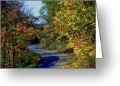 Indiana Autumn Greeting Cards - Country Drive Greeting Card by Gary Wonning