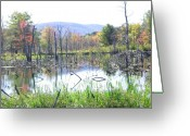 The Berkshires Greeting Cards - Country Home Greeting Card by Peter Williams