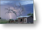 Lightning Bolt Pictures Greeting Cards - Country Horses Lightning Storm NE Boulder County CO  Crop Greeting Card by James Bo Insogna