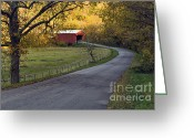 Indiana Autumn Greeting Cards - Country Lane - D007732 Greeting Card by Daniel Dempster