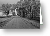 Brian Kerls Greeting Cards - Country Lane Greeting Card by Brian Kerls