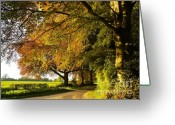 Rural Road Greeting Cards - Country lane in deepest rural Hampshire Greeting Card by Alex Cassels