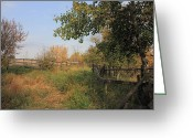 Country Lanes Photo Greeting Cards - Country Lane Greeting Card by Jim Sauchyn