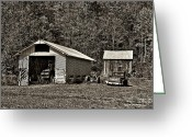 Shed Greeting Cards - Country Life sepia Greeting Card by Steve Harrington