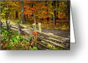 Old Wooden Fence Greeting Cards - Country road in autumn forest Greeting Card by Elena Elisseeva