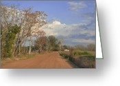Spring Scenes Greeting Cards - Country Road Greeting Card by Jan Amiss Photography
