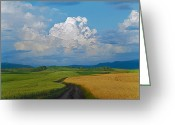Cornfield Greeting Cards - Country road Greeting Card by Pavel  Filatov
