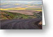 Old Country Roads Greeting Cards - Country Road Greeting Card by Steve McKinzie