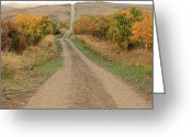 Autumn Scenes Greeting Cards - Country Road to Nowhere Greeting Card by Jim Sauchyn