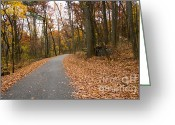 C Casch Greeting Cards - Country Roads Of Gettysburg Greeting Card by C Casch