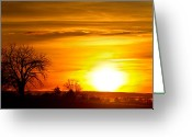 Sunset Wall Art Greeting Cards - Country Sunrise 1-27-11 Greeting Card by James Bo Insogna