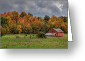 Clayton Photo Greeting Cards - Country Time Greeting Card by Lori Deiter