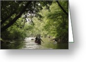 Paddles Greeting Cards - Couple Canoeing Under Tree Cover Greeting Card by Greg Dale