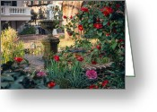 Carolina Greeting Cards - Courtyard Surprise Greeting Card by Suzanne Gaff
