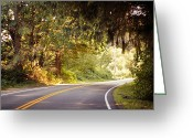 Yellow Line Greeting Cards - Covered Road Greeting Card by Tanya Little