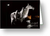 Nightshot Greeting Cards - Cowboy at Rest Greeting Card by Christine Till