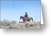 Cowboy Greeting Cards - Cowboy Desert Moon Greeting Card by Cindy Singleton