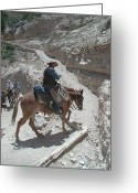 N Taylor Greeting Cards - Cowboys in the Canyon Greeting Card by N Taylor