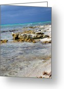 Tropical Photographs Photo Greeting Cards - Cozumel Before Thunder Greeting Card by Danielle  Parent