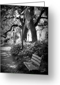 Savannah Square Greeting Cards - Cozy Corner in Savannah Greeting Card by Carol Groenen