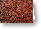 Mud Greeting Cards - Cracked And Dried Mud In Hawaii Greeting Card by G. Brad Lewis