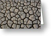 Mud Greeting Cards - Cracked Mud On The Salt Flats Greeting Card by Pete Oxford