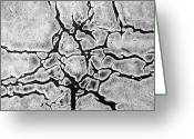 Disasters Greeting Cards - Cracks Greeting Card by Gerard Hermand
