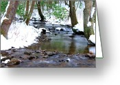 Trout Stream Greeting Cards - Craig Run Greeting Card by Thomas R Fletcher