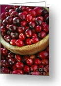 Thanksgiving Greeting Cards - Cranberries in a bowl Greeting Card by Elena Elisseeva