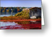 Cranberries Greeting Cards - Cranberry Bog Farm II Greeting Card by Gina Cormier