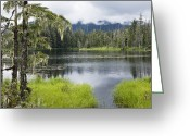 U.s. National Forest Greeting Cards - Crane Lake, Tongass National Forest Greeting Card by Konrad Wothe