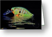 Fun Greeting Cards - Crank Bait I Greeting Card by Tom Mc Nemar