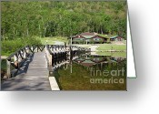 Saco River Greeting Cards - Crawford Notch State Park - White Mountains NH USA Greeting Card by Erin Paul Donovan