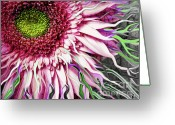 Gerbera Daisy Mixed Media Greeting Cards - Crazy Daisy Greeting Card by Christopher Beikmann