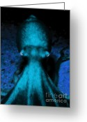 Mediterranian Greeting Cards - Creatures of The Deep - The Octopus - v4 - Cyan Greeting Card by Wingsdomain Art and Photography