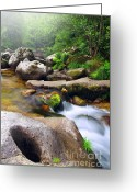 Fluid Greeting Cards - Creek Greeting Card by Carlos Caetano