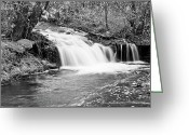 Stock Photography Greeting Cards - Creek Merge Waterfall in Black and White Greeting Card by James Bo Insogna